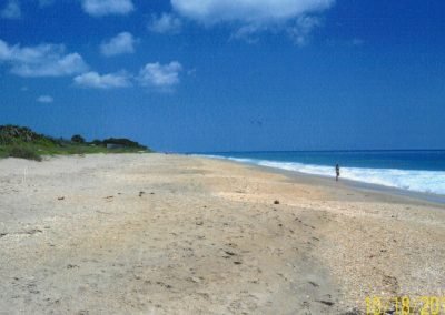 Beach, 100 yds from house