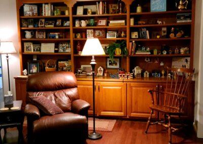 Living room built in case